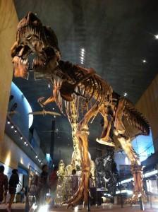 いのちの旅博物館